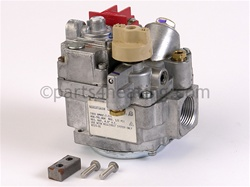 Parts4heating Com Teledyne Laars R0027300 Pool Heater