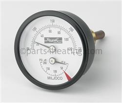 Raypak 600672 Temperature Amp Pressure Gauge Kit
